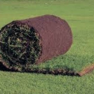 Graszoden bestellen